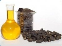 Jatropha Seed Oil