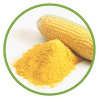 Yellow Corn Powder