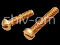 Brass Screws (Round And Cheese Head)