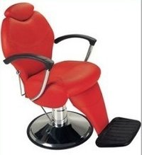 Imported Salon Beauty Parlor Chair