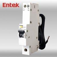 RCBO 1P+N 16A (Residual Circuit Breaker with Overcurrent Protection)