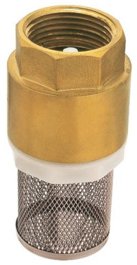 Brass Spring Check Valve With Net