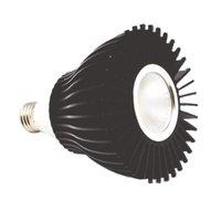 LED Par Light (15W)