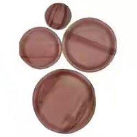 Areca Leaf Plate