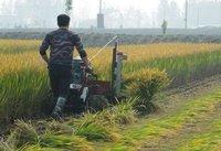 Rice And Wheat Reaper Binder Machine