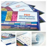 Plastic File Folders Printing Services