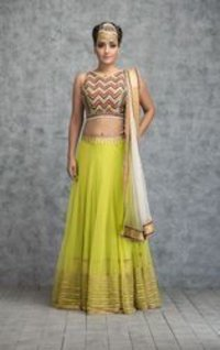 Embroidered Lime Green Tribal Lehenga