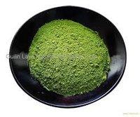 Fresh Green Tea Extract Powder