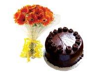 Dark Chocolate Wonder With Gerbera Bunch Combo