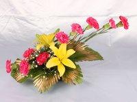 Carnation Glow