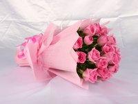 Effulgent Pink Roses
