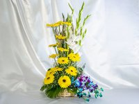 Yellow Gerbera Twist Gift