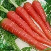 Desi Red Carrot Seed