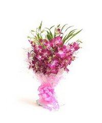 Cherishing Orchids Flowers