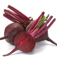 Beetroot Ddr Seeds