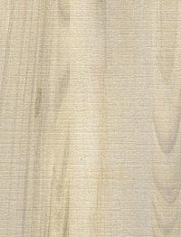 Winter Maple Legeno Wood