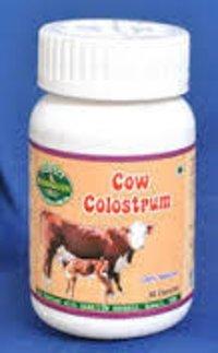 Cow Colostrum