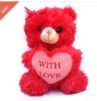 Carrot Red Teddy Bear With Love Message