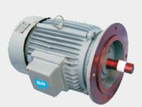 Ac Sq.Cage Indn.Motor Flange Mounted