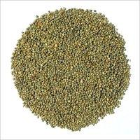 Green Millet 1