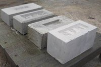 Reliable Fly Ash Brick