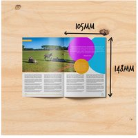 Multiple Folding Brochure Printing Service