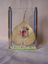 Gold Plated Natural Peepal Leaf