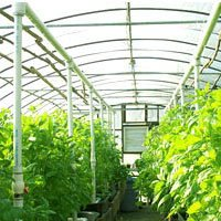 Greenhouse Agro Shade Nets