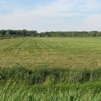 Agricultural And Farming Land