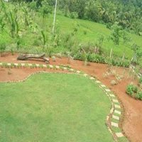 Garden Lawn Development