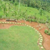 Garden Lawn Development