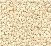Sesame Seeds Natural