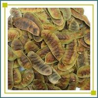 Senna (Cassia Angustifolia) Pods