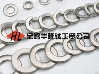 Plain Titanium Alloy Washers And Spring Washers