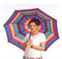 Multi Colour Ladies Umbrella