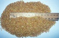 Birds Millet