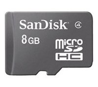 8 GB Micro SD Card