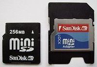 Mini SD Card