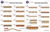 Printed Moulding Laminates