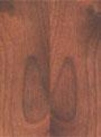 American Walnut Plywood