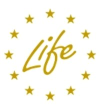 Life Prediction Astrology Service