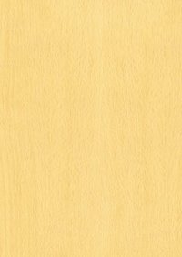 Precious Beech Decorative Laminates