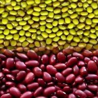 Red Kidney & Green Mung Beans