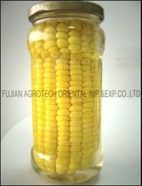 Canned Sweet Corn Cob