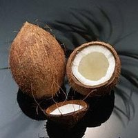 Coconut