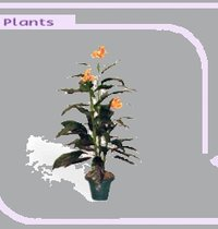 Artificial Plants