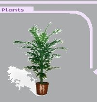 Elegant Artificial Plants