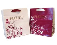 Printed Paper Bags