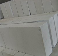 Autoclaved Aerated Concrete Bricks