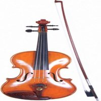 Ordinary Violin